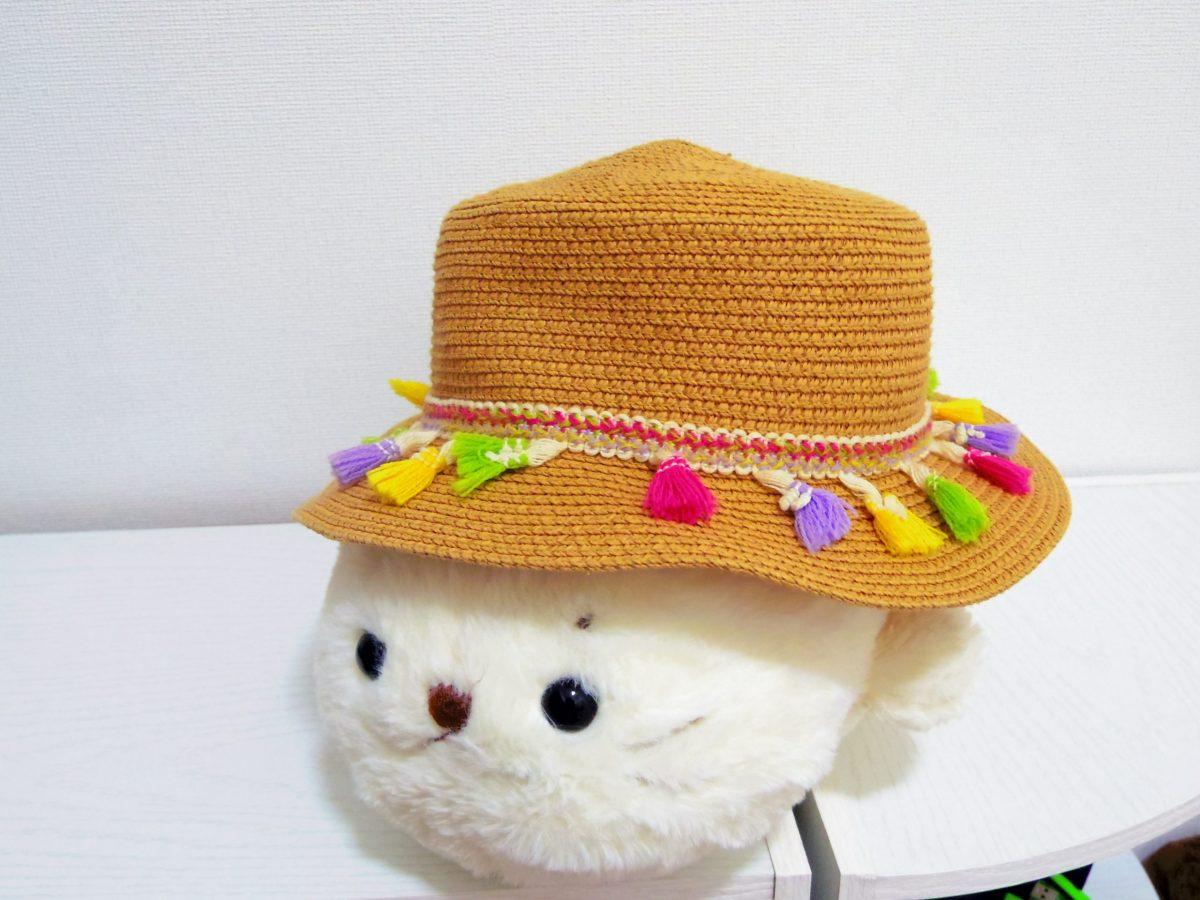 台湾_帽子
